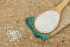 Glutinous rice in wooden spoon. With hemp sacks background Royalty Free Stock Image