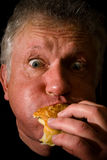 Glutton Stock Photo