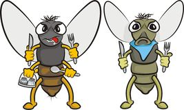 Gluttonous fly. Plague of flies - carrier of disease and germs Stock Photos