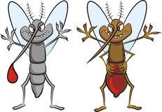 Gluttonous mosquito. Plague of mosquitoes - carrier of disease and germs Stock Photos