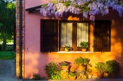 Glycinpurpur eines alten Hauses von Italien mit dem Fenster und dem Sonnenuntergang Stockbilder