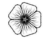Glyph da flor de 5 pétalas ilustração royalty free