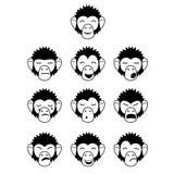 Glyphaffe-Gesichtsausdrücke Stockfoto