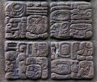 Glyphs Mayan antichi Fotografia Stock