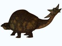 Glyptodont Profile Stock Photo
