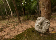 Gömd maskering i en tempel i Angkor Arkivfoto