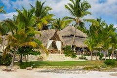 Gömma i handflatan och den tropiska stranden i tropiskt paradis. Sommartid som är holyday i Dominikanska republiken, Seychellerna  Royaltyfri Bild