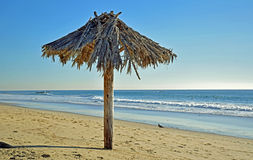 Gömma i handflatan paraplyet på Shoreline på Thalia Street Beach i Laguna Beach, Kalifornien Royaltyfria Bilder