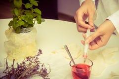 gmo实验室种植研究员 免版税图库摄影