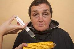 GMO玉米 免版税图库摄影