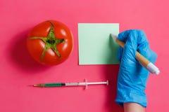 GMO科学家做笔记,在注射器,红色蕃茄-基因上在桃红色背景的修改过的食物概念的绿色液体 图库摄影
