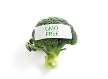 GMO释放素食者 免版税库存图片
