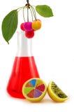 GMO imagem de stock royalty free