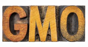 GMO acronym in vintage wood type Royalty Free Stock Photo