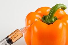 Gmo bell pepper Royalty Free Stock Photo