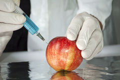 GMO concept. Red apple in genetic engineering laboratory, gmo food concept stock photography