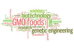 GMO concepts Royalty Free Stock Photos