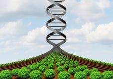 GMO die Wetenschap bewerken royalty-vrije illustratie