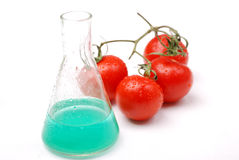 GMO food Royalty Free Stock Image
