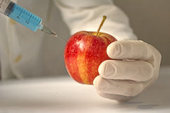 Gmo food concept Stock Images