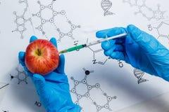 GMO forskare Injecting Green Liquid från injektionssprutan in i Apple - genetiskt ändrat matbegrepp Royaltyfri Foto