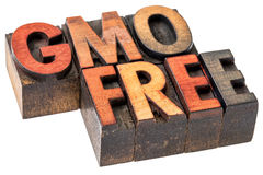 GMO free banner in wood type Stock Photo