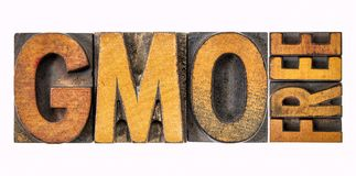 GMO free banner in wood type. GMO genetically modified organism free banner - isolated word abstract in vintage letterpress wood type stained by inks Stock Photography