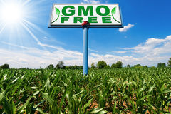 GMO Free - Billboard in a Corn Field Royalty Free Stock Photography