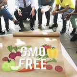 GMO Free Genetically Modified Organism Healthy Concept Stock Images
