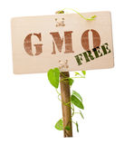 GMO free sign. Genetically modified organism GMO free message on a wooden panel and green plant - image is isolated on a white background stock photography
