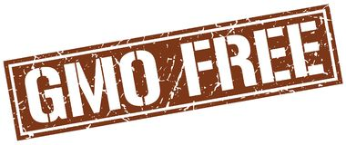 Gmo free stamp. Gmo free square grunge sign isolated on white. gmo free royalty free illustration