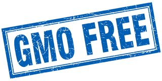 Gmo free stamp. Gmo free square grunge stamp. gmo free sign. gmo free stock illustration