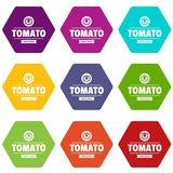 Gmo free tomato icons set 9 vector. Gmo free tomato icons 9 set coloful isolated on white for web Stock Photos