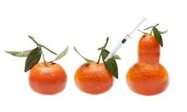GMO fruit - Genetische wijziging Stock Afbeeldingen