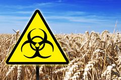 Gmo genetic modified food warning sign. In front of a wheat field royalty free stock photography