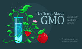 GMO genetically modified fruits growing in test tube. Eps10 illustration stock illustration