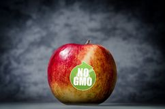 Genetically modified organisms. GMO apple royalty free stock image