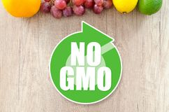 Genetically modified organisms. GMO concept stock image