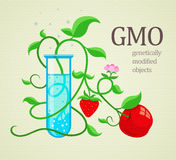 GMO genetically modifiedplants growing in test-tube Stock Images