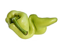 GMO green pepper Royalty Free Stock Photo