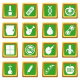 GMO icons set green. GMO icons set in green color isolated vector illustration for web and any design Stock Photos