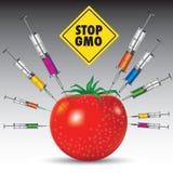 GMO jedzenie ilustracja wektor