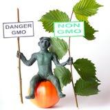 GMO-Konzeptgefahrenzahl eines Mannes Lizenzfreies Stockbild