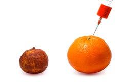 Gmo. Modified fruits Stock Photos