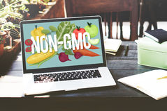 GMO natury rośliny technologii Organicznie pojęcie Zdjęcie Royalty Free