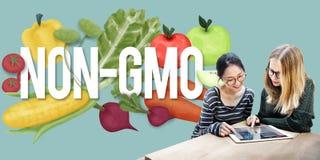 GMO natury rośliny technologii Organicznie pojęcie Fotografia Royalty Free