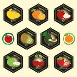 GMO non GMO gratuit et logo organique d'étiquette de garantie marquent le sti d'emblème Photographie stock libre de droits