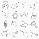 GMO outline icons Stock Photography
