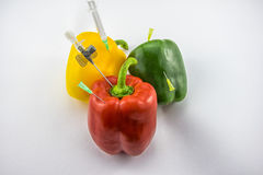 GMO Peppers. Red, green and yellow Paprika being stung by a lot of needles and syringes near many tablets and pills,  on white background and suggesting the idea Stock Photos