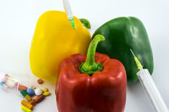 GMO Peppers Stock Photography